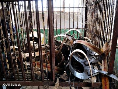 Metallspännen som använts på björnar för att tömma dem på galla