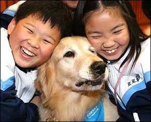 Två kinesiska barn med hunden Professor Schneider på AAF:s utbildningsprogram Professor Paws