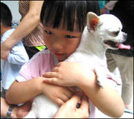 Liten flicka kramar en hund i Animals Asia Foundations Dr Dog-program