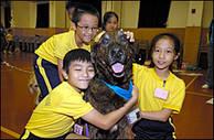 Skolbarn i Kina kramar om en av hundarna i Professor Paws program