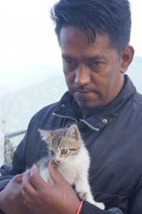 Kattunge räddas